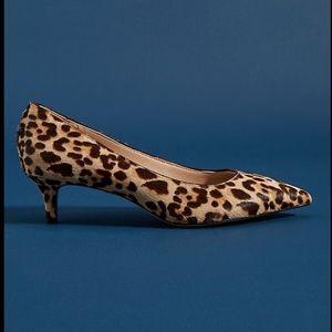 Sam Edelman Dori Leopard Kitten Heel Pumps